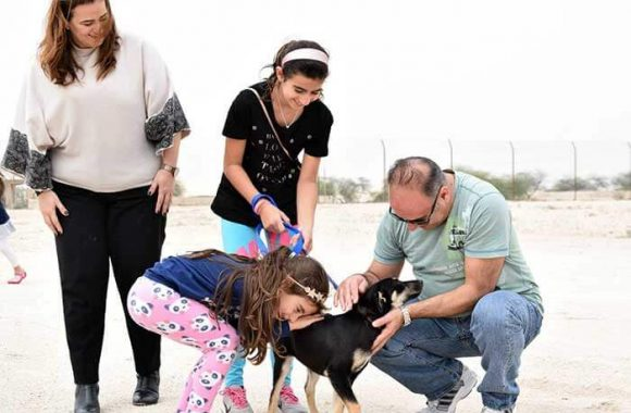 Paws Rescue Qatar - Community Initiatives