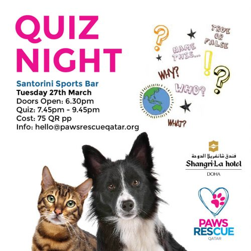 paws-quiz-night-insta